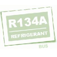 Stazione aria condizionata Brain Bee R134A per pullman corriere e truck